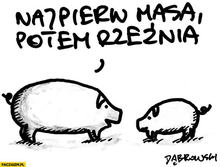 Najpierw masa potem rzeźnia świnie