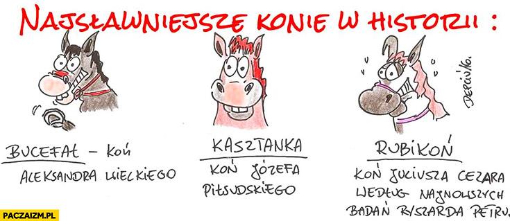 Najsławniejsze konie w historii: Bucefał, Kasztanka, Rubikoń koń Juliusza Cezara według najnowszych badan Ryszarda Petru