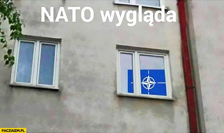 NATO wygląda przez okno