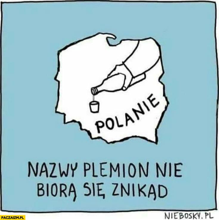 Nazwy plemion nie biorą się znikąd: Polska polanie kielona