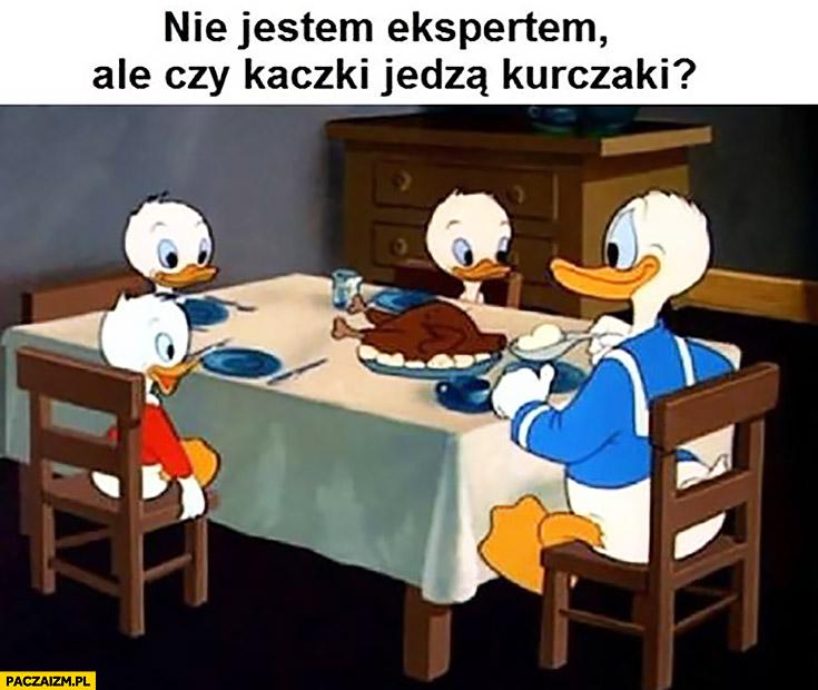 Nie jestem ekspertem, ale czy kaczki jedzą kurczaki? Kaczor Donald