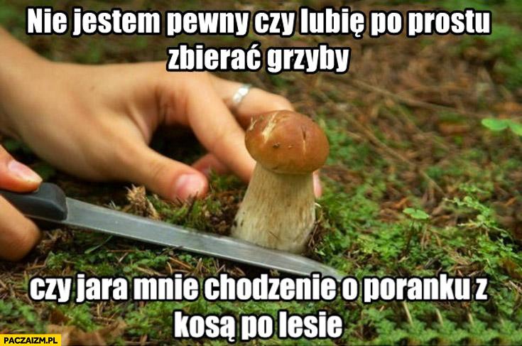 Nie jestem pewien czy lubię po prostu zbierać grzyby czy jara mnie chodzenie o poranku z kosą po lesie