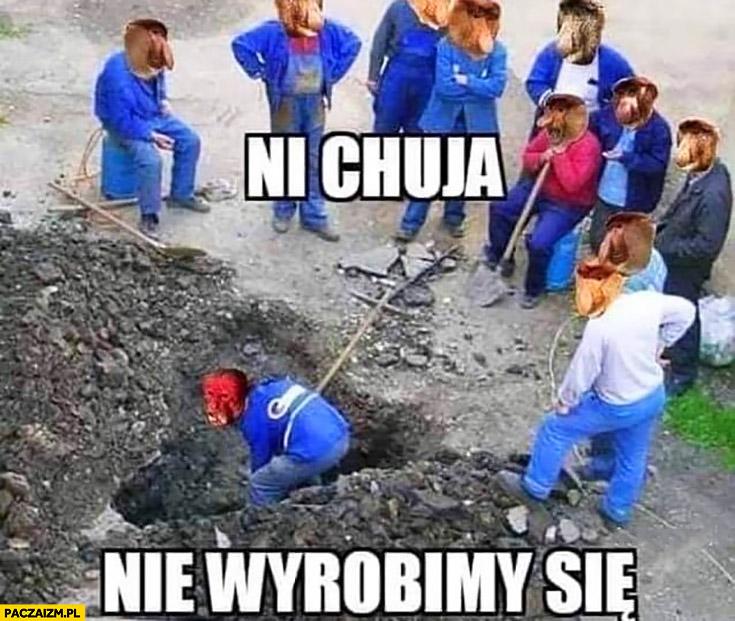 Nie ma opcji, nie wyrobimy się. Na budowie pracuje tylko Ukrainiec typowy Polak nosacz małpa