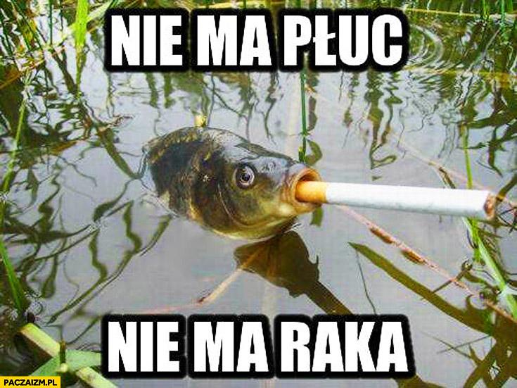 Nie ma płuc nie ma raka ryba papieros fajka szlug