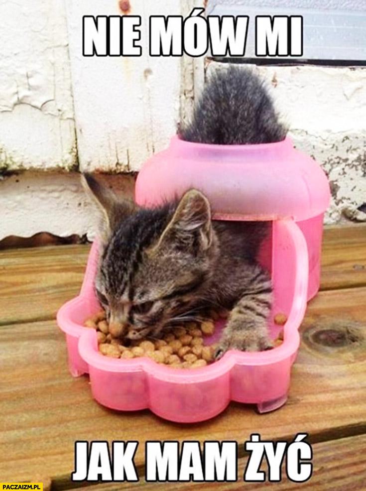 Nie mów mi jak mam żyć kot karmienie