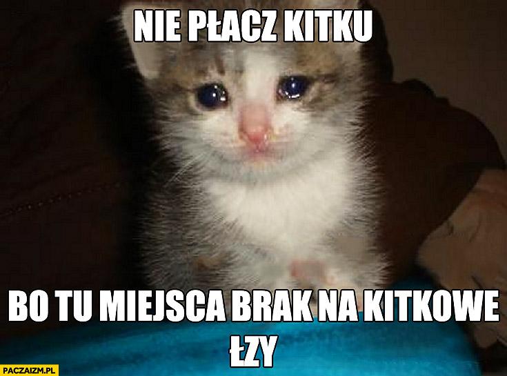 Nie płacz kitku bo tu miejsca brak na kitkowe łzy. Płaczący kot kotek
