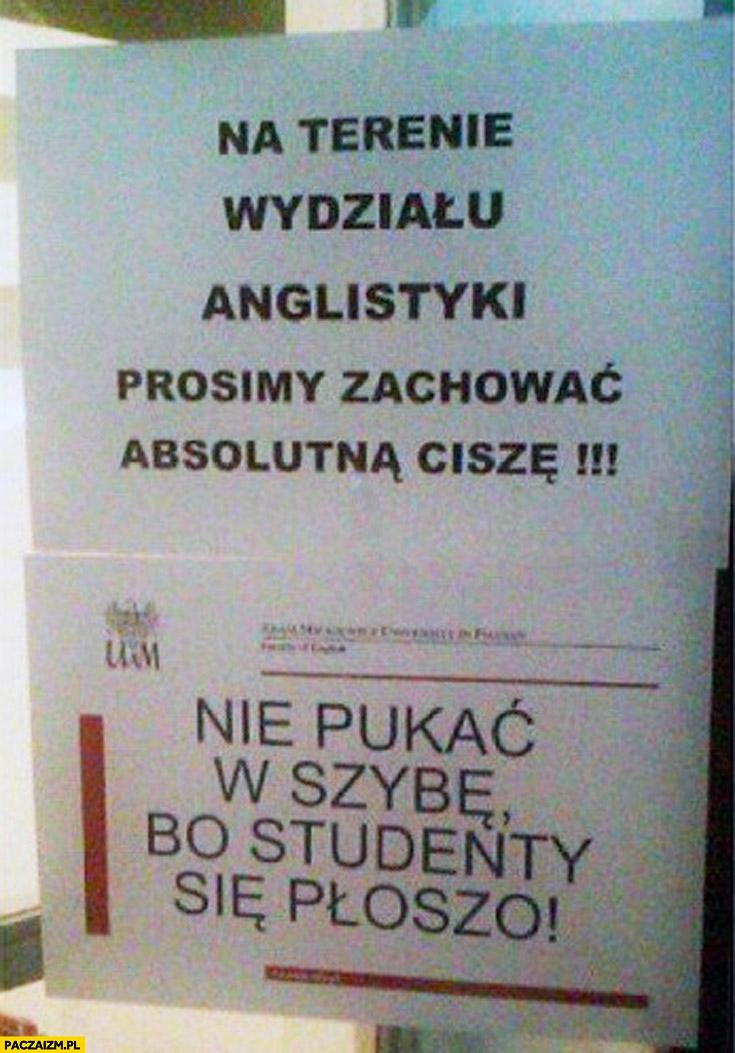 Nie pukać w szybę bo studenty się płoszo wydział anglistyki