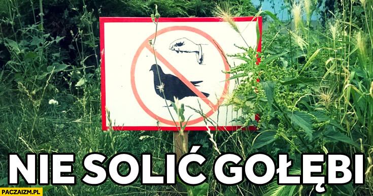 Nie solić gołębia