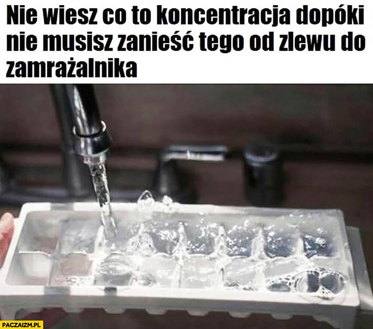 Nie wiesz co to koncentracja dopóki nie musisz zanieść tego od zlewu do zamrażalnika forma kostki lodu