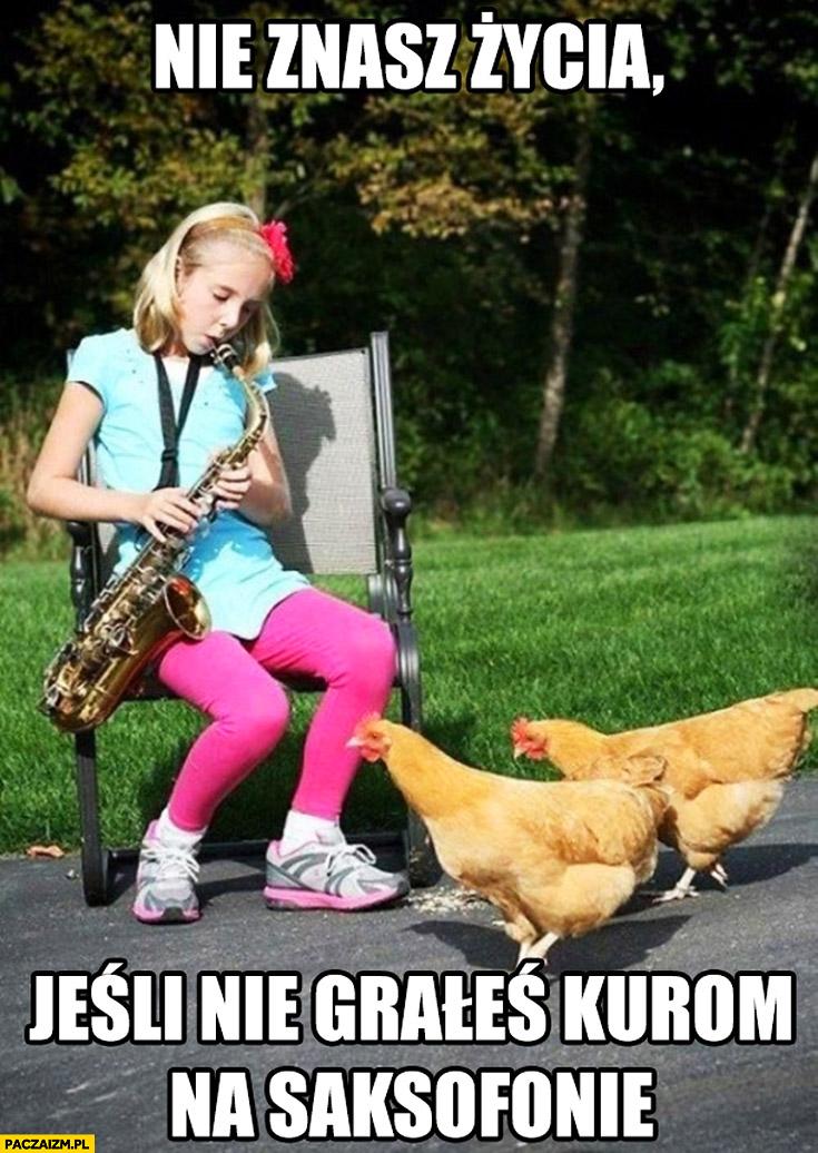 Nie znasz życia jeśli nie grałeś kurom na saksofonie