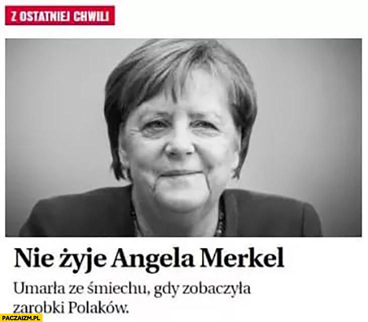 Nie żyje Angela Merkel umarła ze śmiechu gdy zobaczyła zarobki Polaków