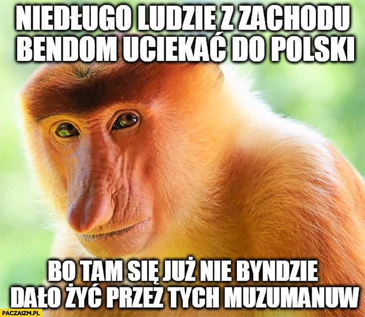 Niedługo ludzie z zachodu będą uciekać do Polski bo tam się już nie będzie dało żyć przez tych muzułmanów typowy Polak nosacz małpa