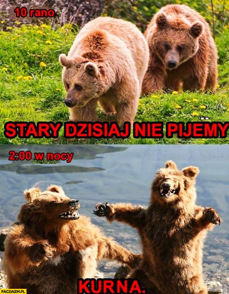Niedźwiedzie stary dziś nie pijemy, o 2 w nocy kurna znowu