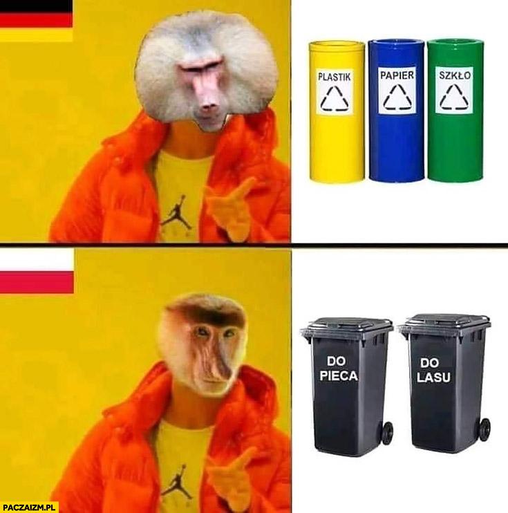 Niemiec segreguje śmieci plastik papier szkło, Polak segreguje: do pieca, do lasu typowy Polak nosacz małpa