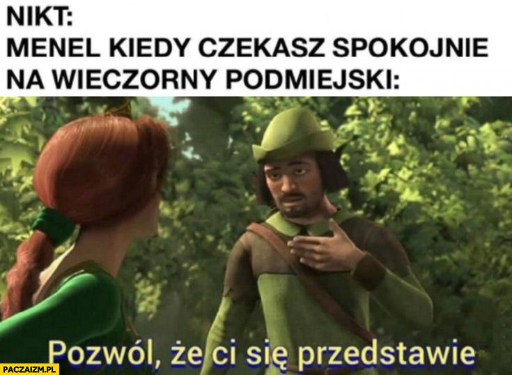 Nikt, menel kiedy czekasz spokojnie na wieczorny podmiejski: pozwól, że ci się przedstawię Shrek