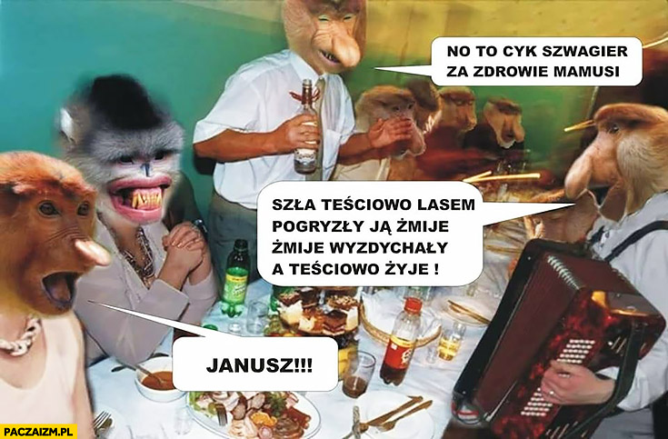 No to cyk szwagier za zdrowie mamusi polska impreza typowy Polak nosacz małpa