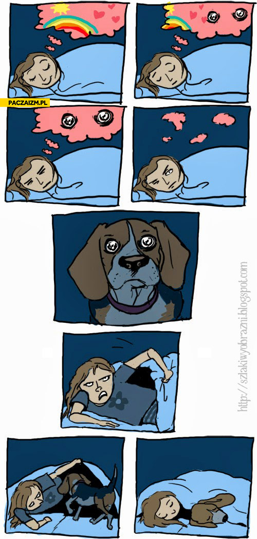 Noc z psem