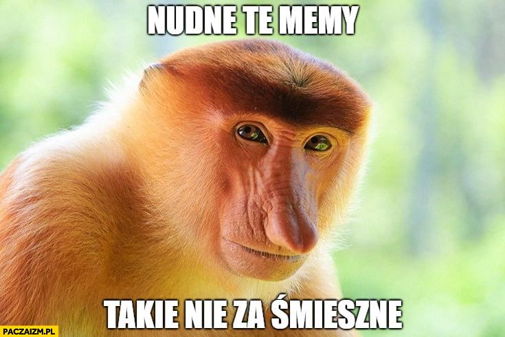 Nudne te memy takie nie za śmieszne typowy Polak małpa nosacz
