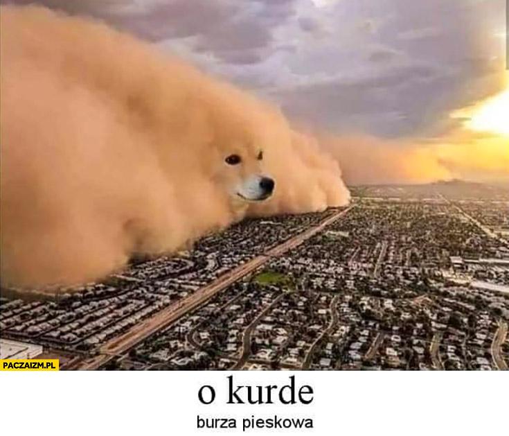 O kurde burza pieskowa piaskowa