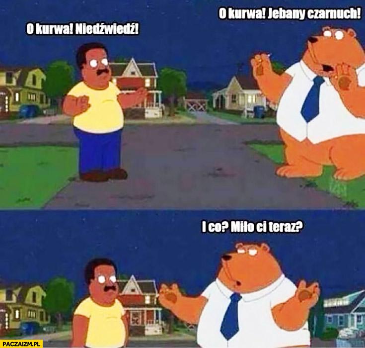 O kurna niedźwiedź, o kurna czarnuch. I co, miło Ci teraz? Family Guy