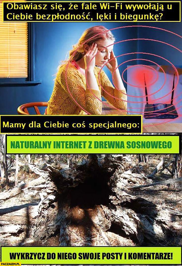Obawiasz się, że fale WiFi wywołają u Ciebie bezpłodność, lęki i biegunkę? Mamy dla Ciebie naturalny internet z drewna sosnowego