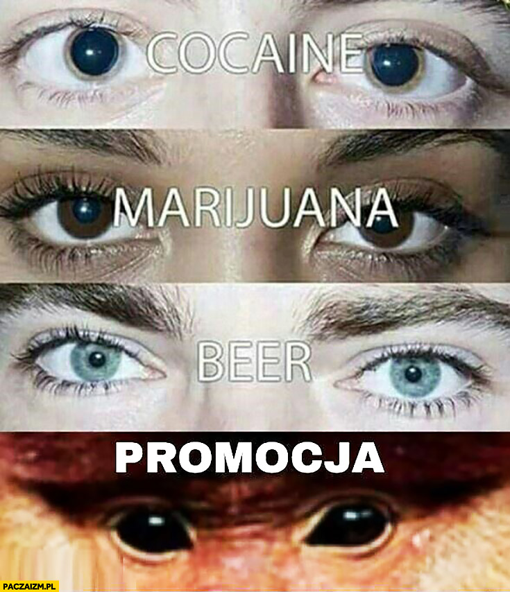 Oczy kokaina, marihuana, piwo, promocja typowy Polak nosacz