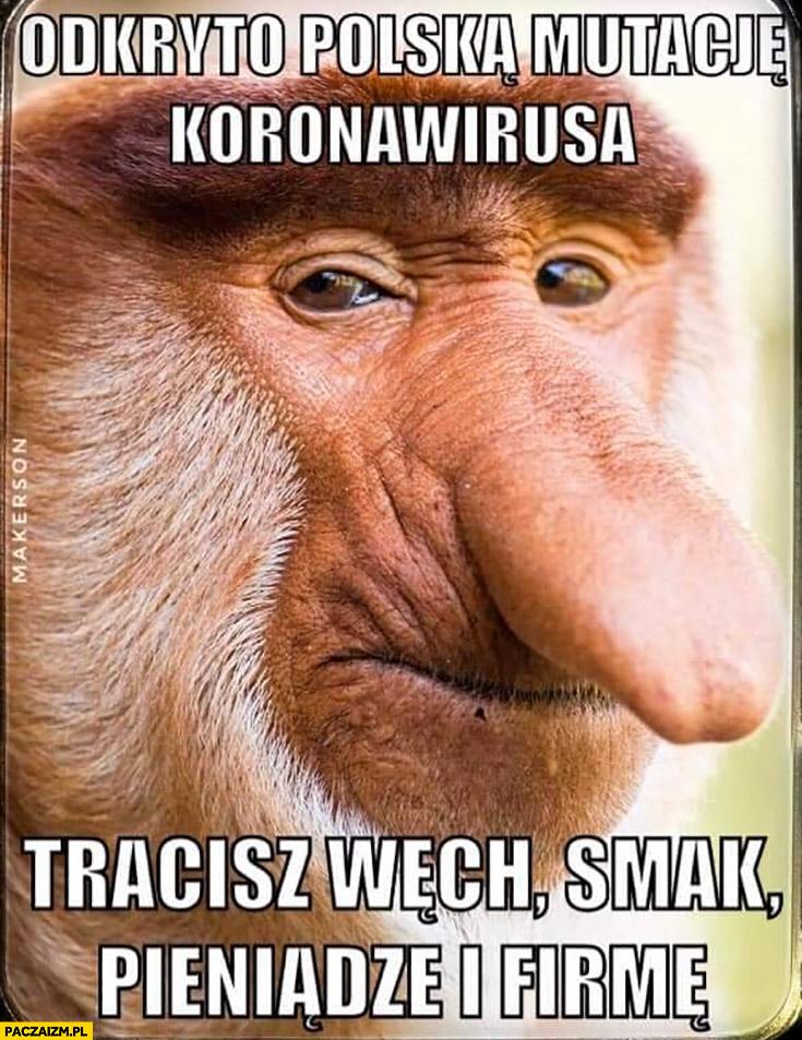 Odkryto polską mutację koronawirusa: tracisz węch, smak, pieniądze i firmę
