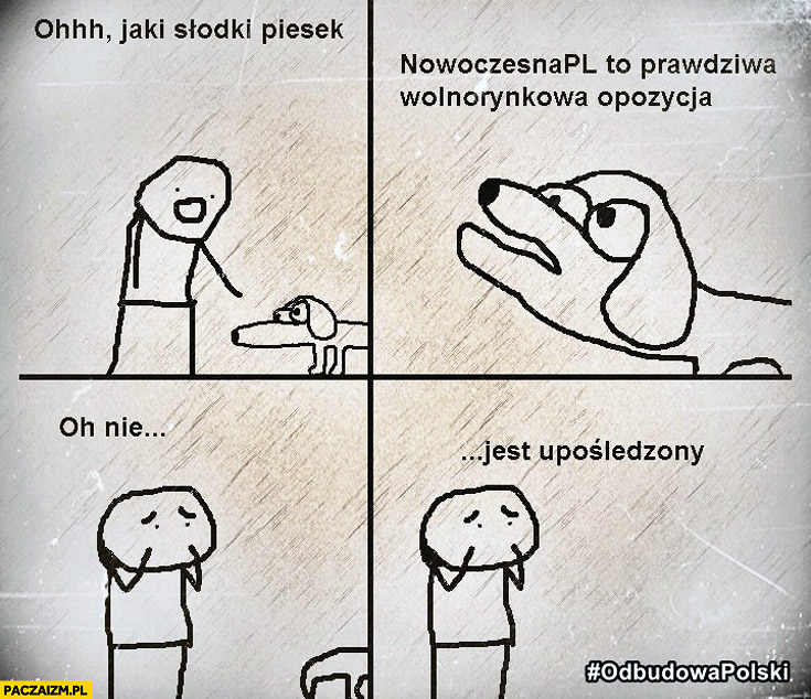 Oh jaki słodki piesek Nowoczesna pl to prawdziwa wolnorynkowa opozycja o nie jest upośledzony