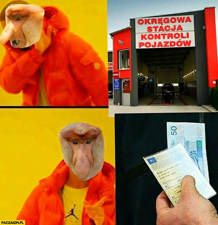Okręgowa stacja kontroli pojazdów nie chce, woli dać łapówkę za przegląd typowy Polak nosacz małpa Drake