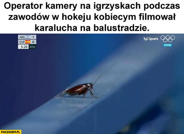 Operator kamery na igrzyskach podczas zawodów w hokeju kobiecym filmował karalucha na balustradzie