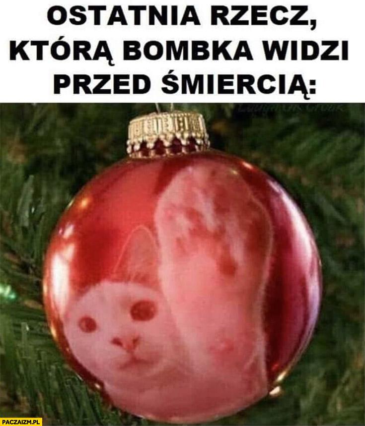 Ostatnia rzecz która bombka choinkowa widzi przed śmiercią kot