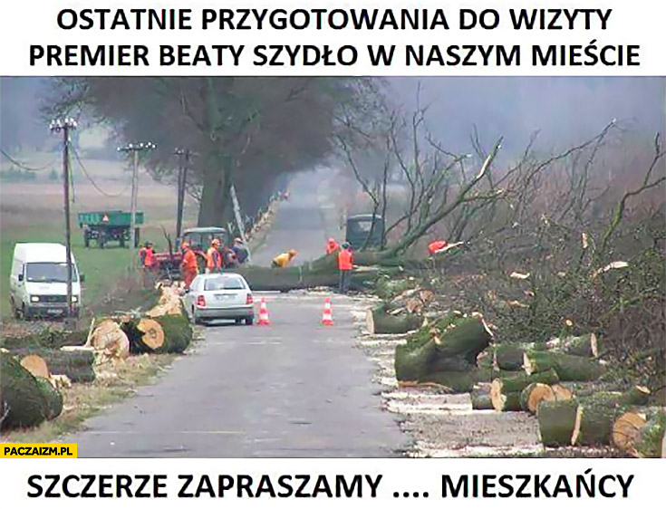 Ostatnie przygotowania do wizyty premier Beaty Szydło w naszym mieście wycinka drzew