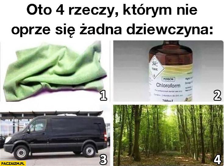 Oto 4 rzeczy którym nie oprze się żadna dziewczyna: chusteczka, chloroform, czarny van, las