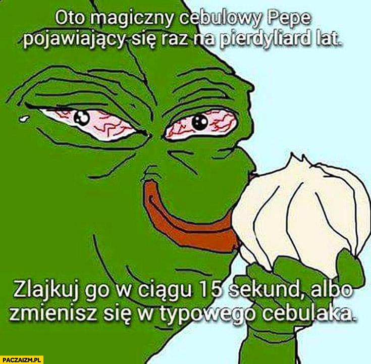 Oto magiczny cebulowy Pepe, zalajkuj go albo zmienisz się w typowego cebulaka