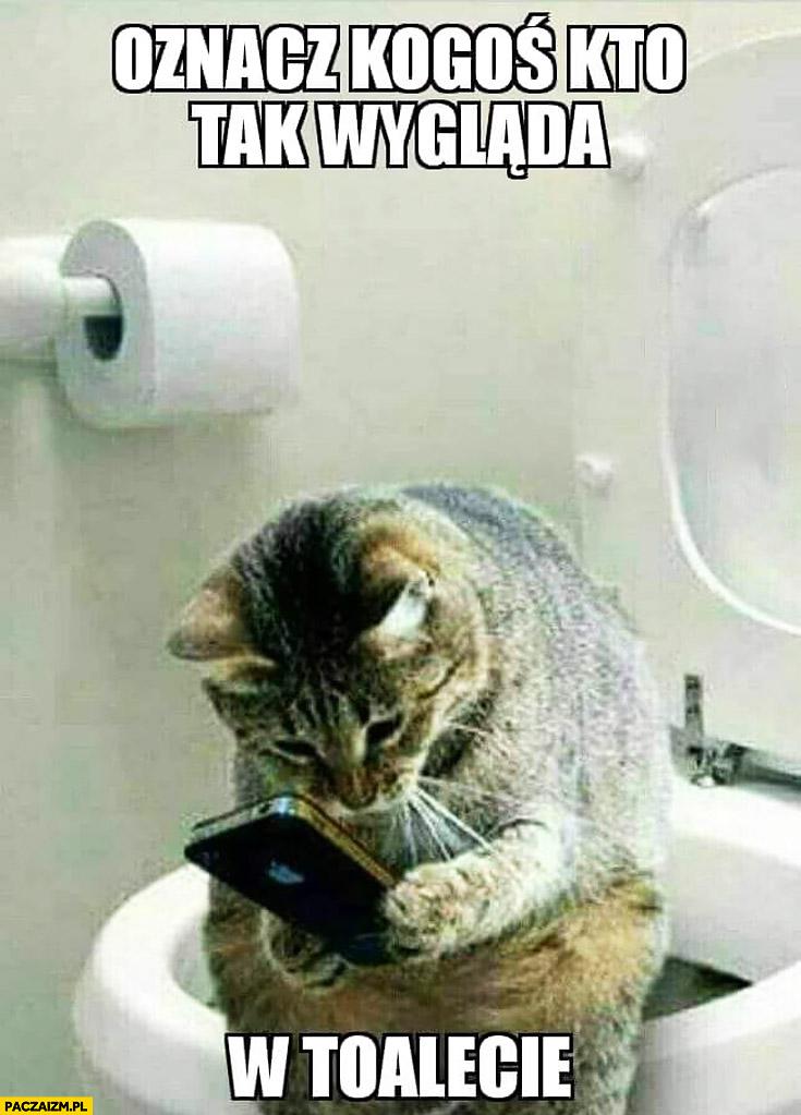Oznacz kogoś kto tak wygląda w toalecie kot siedzi i patrzy w telefon