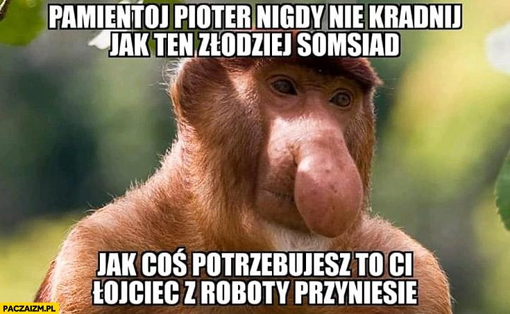 Pamiętaj Pioter nigdy nie kradnij jak ten złodziej sąsiad jak coś potrzebujesz to Ci ojciec z roboty przyniesie typowy Polak nosacz małpa