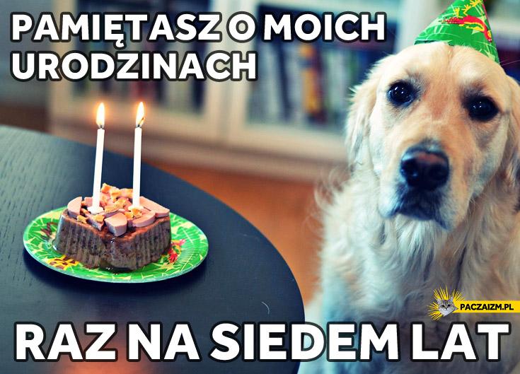 Pamiętasz o moich urodzinach raz na siedem lat