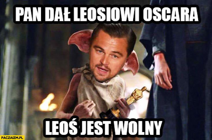Pan dał Leosiowi Oscara Leoś jest wolny Leonardo DiCaprio