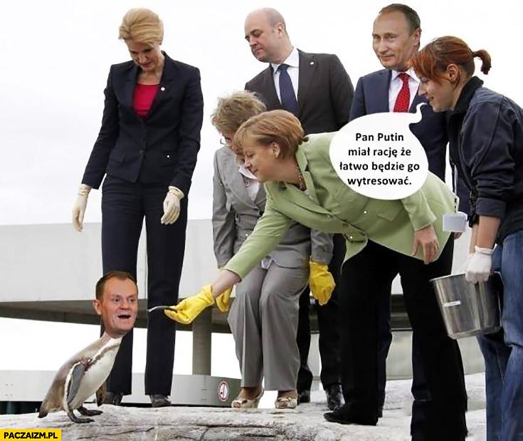 Pan Putin miał rację, że łatwo będzie go wytresować Donald Tusk