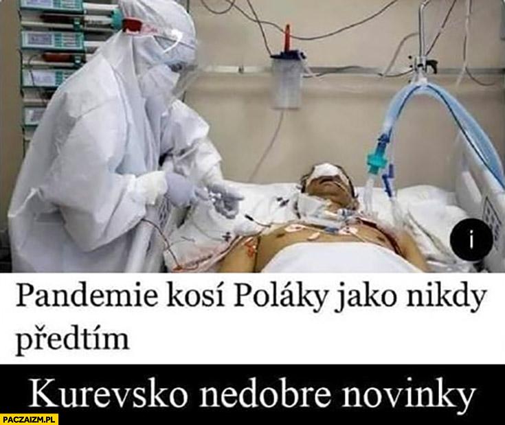 Pandemia kosi Polaków jak nigdy przedtem kuresko niedobre nowinky Czesi Słowacy o Polsce