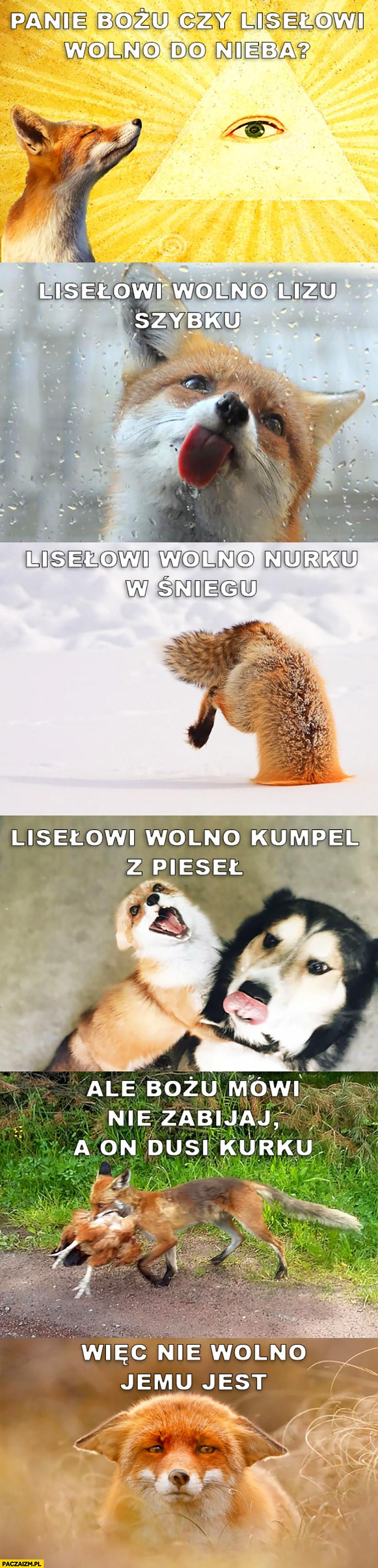 Panie Boże czy lisowi wolno do nieba? Wolno lizać szybę, nurkować w śniegu, kumplować z psem ale Bozia mówi nie zabijaj a lis dusi kurę, więc nie wolno jemu