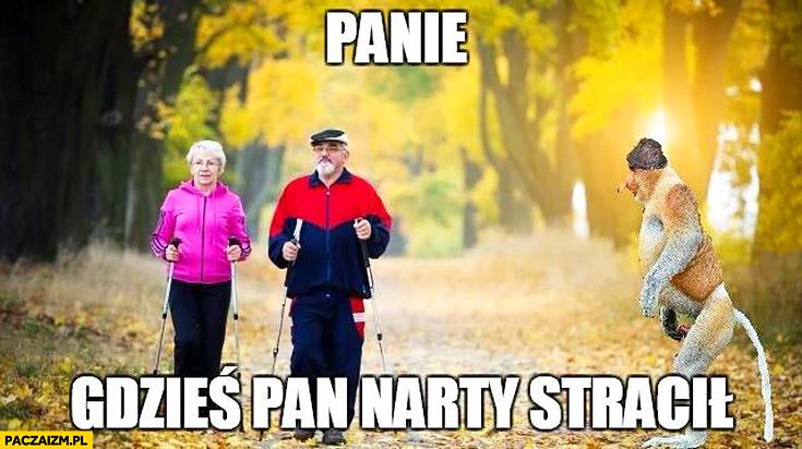 Panie gdzieś Pan narty stracił nordic walking typowy Polak nosacz małpa