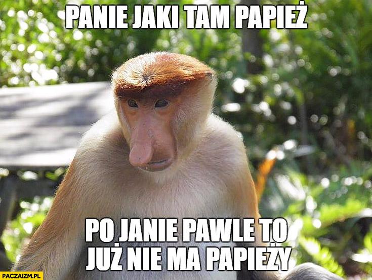 Panie jaki tam papież, po Janie Pawle to już nie ma papieży. Typowy Polak nosacz