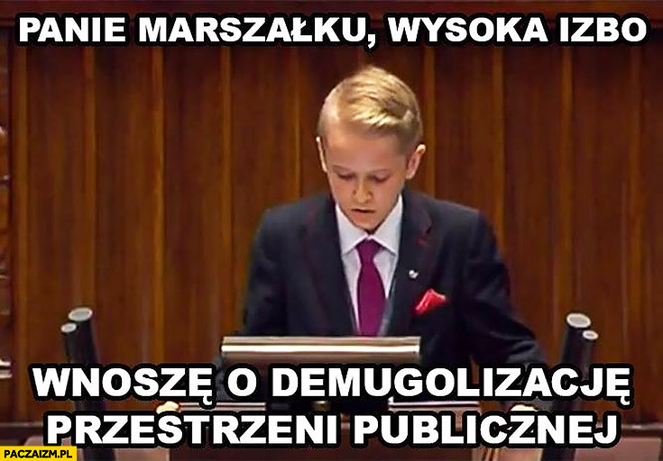 Panie Marszałku, wysoka izbo wnoszę o demugolizację przestrzeni publicznej dzieci w sejmie Harry Potter