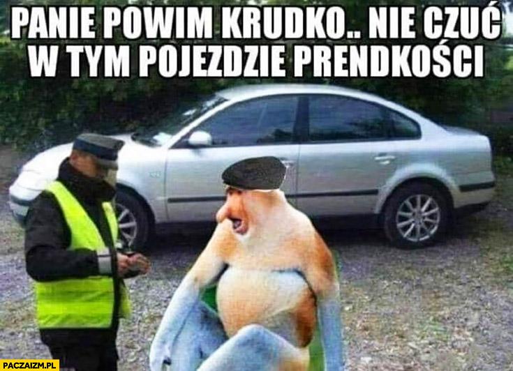 Panie powiem krótko nie czuć w tym pojeździe prędkości Passat policjant typowy Polak nosacz małpa