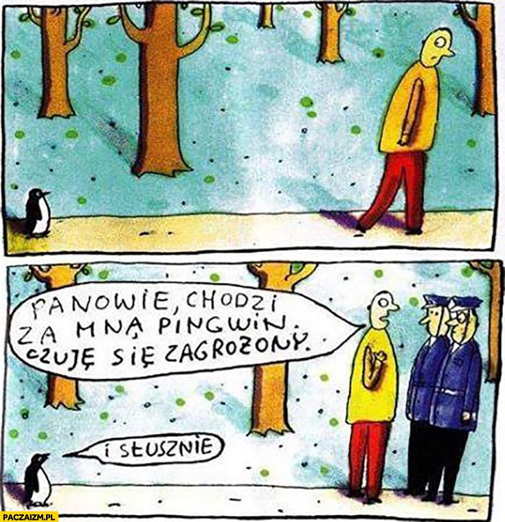 Panowie chodzi za mną pingwin, czuję się zagrożony, i słusznie Raczkowski policjanci