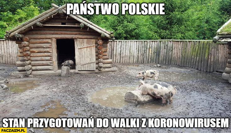 Państwo Polskie stan przygotowań do walki z koronawirusem chlew