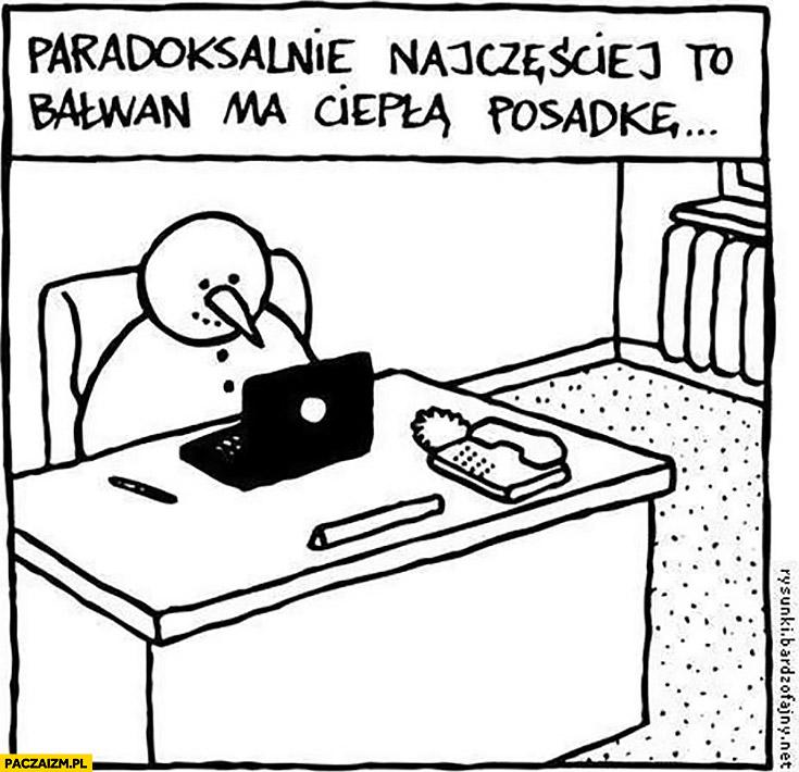 Paradoksalnie najczęściej to bałwan ma ciepłą posadkę