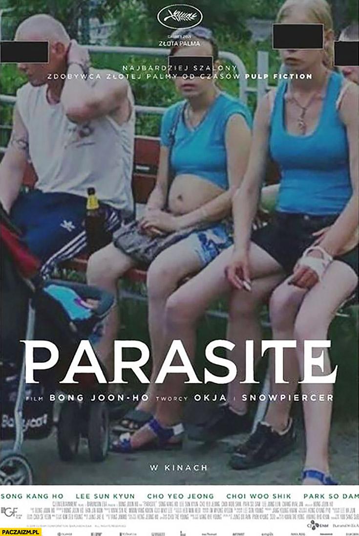 Parasite plakat filmu polska patologia patola 500 plus przeróbka