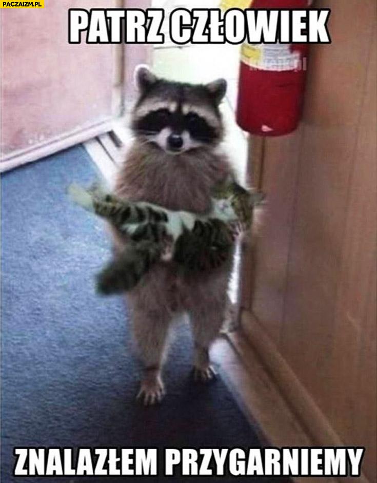 Patrz człowiek znalazłem przygarniemy szop pracz z kotem